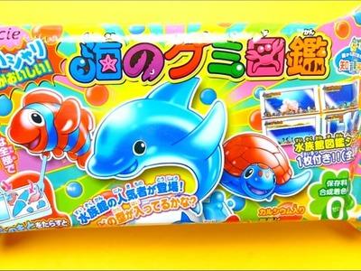 Japanese DIY Happy Kitchen Dolphin Gummy Kracie Popin Cookin