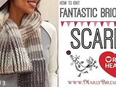 Learn How to Knit Fantastic Brioche Scarf Part 1 of 3