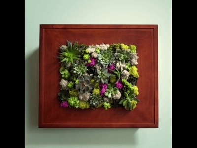 How to Make a Succulent Wall Garden with a Picture Frame