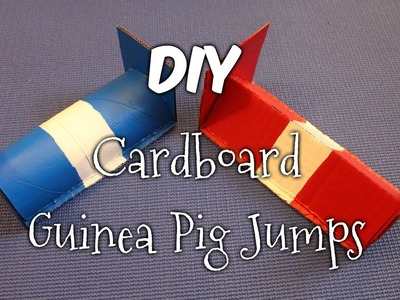 How to Make Colourful Cardboard Guinea Pig Jumps
