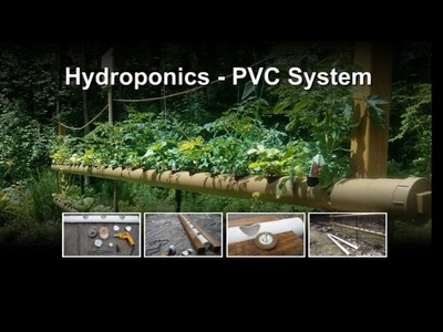 Hydroponics Vegetable Backyard Gardening - How to cut holes in PVC tubes for hydroponics (NFT)