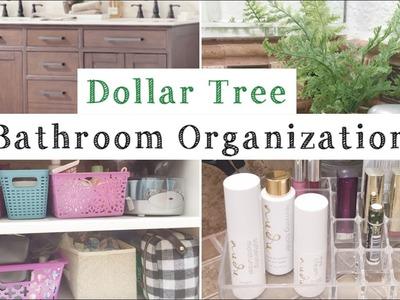 Dollar Tree Bathroom Organization   Organize With Me!   momma from scratch