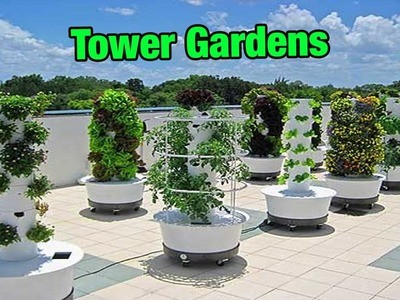 Tower Gardens - FOOD GARDENING