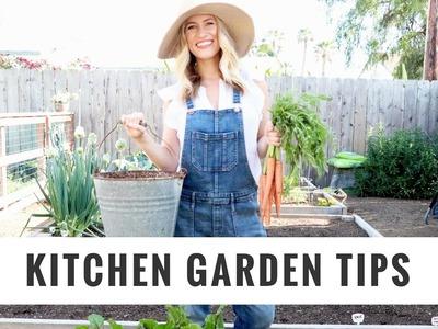 Tips To Start + Grow A Kitchen Garden | DIY, Lifestyle, Gardening | Healthy Grocery Girl YouTube