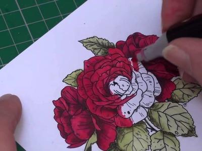 Spectrum Noir Colour Class - Reds (card-making-magic.com)