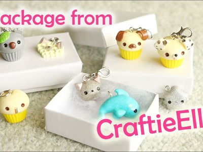 Package from CraftieElla│Polymer Clay Charms