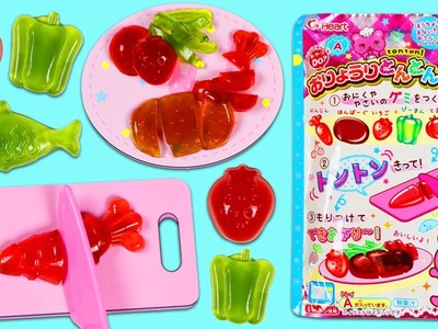 DIY Japanese Gummy Candy Making Kit Ton Ton Yummy Fruit Vegetable Fish Shapes!