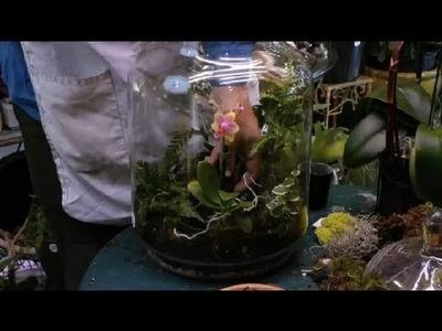 How to Build an Orchid Terrarium : Terrariums & More