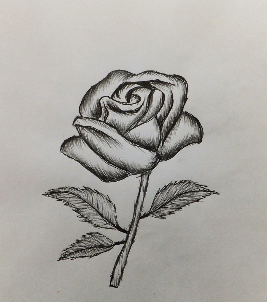 Картинки розы которые легко нарисовать, надписью