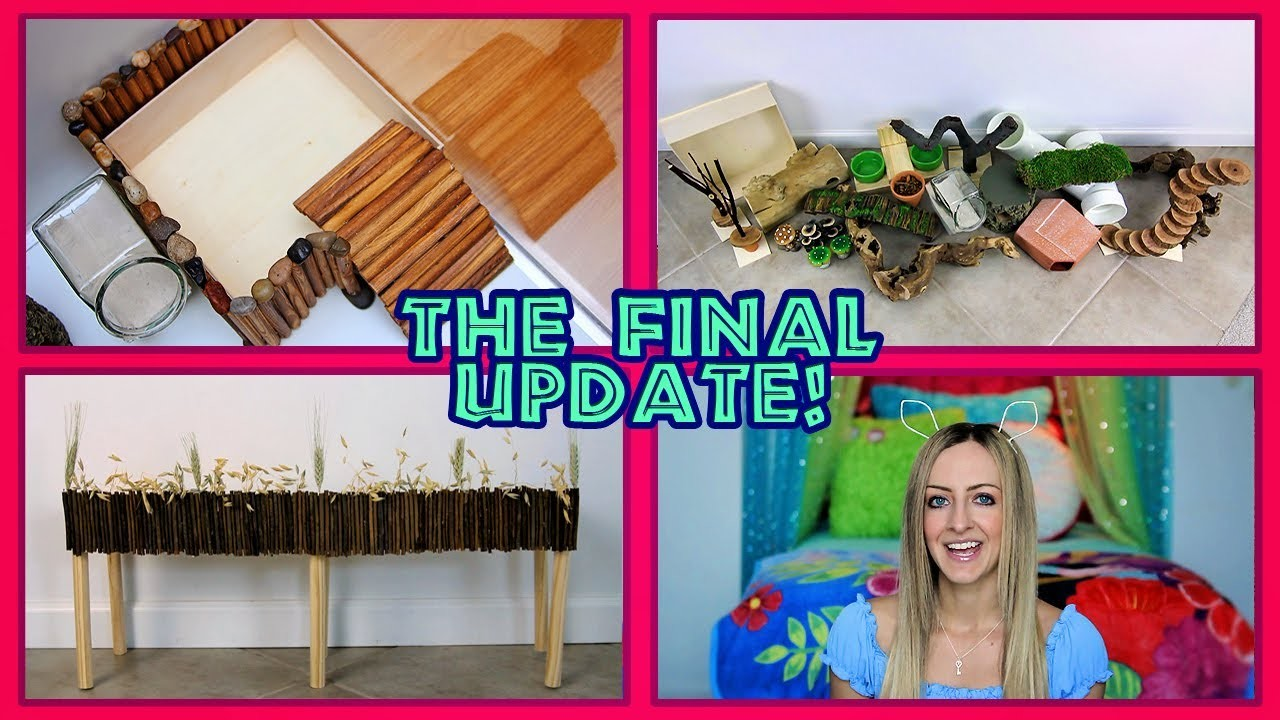 The Final Cage Update: Finishing Fun DIY Projects & A Plant Haul! ????
