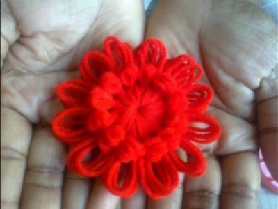 Woolen Flower Work