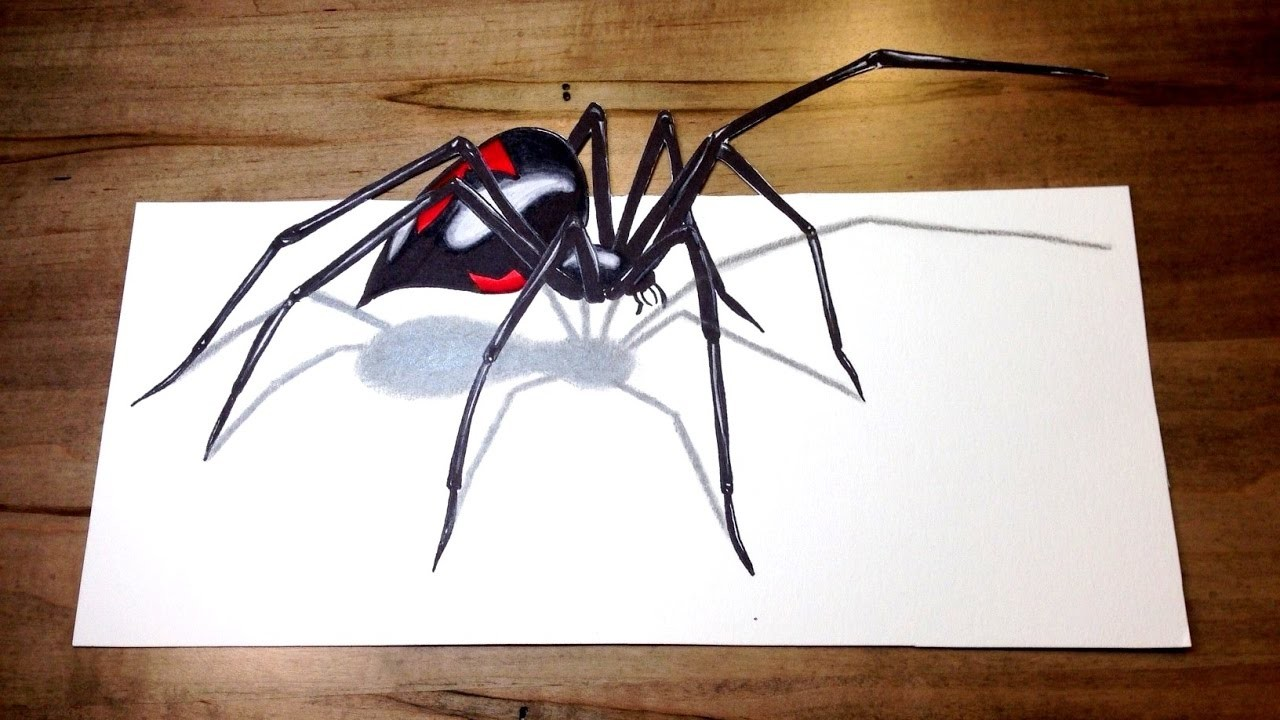 3d spider drawing