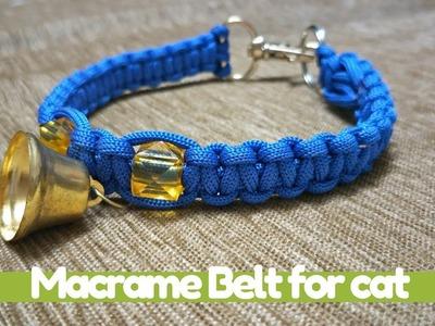 How to make Macrame Belt for Cat | Macrame Art