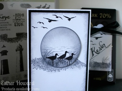 PART 1 Stampin Up, High Tide, Black and White sea theme card, with Stampin Star Creations