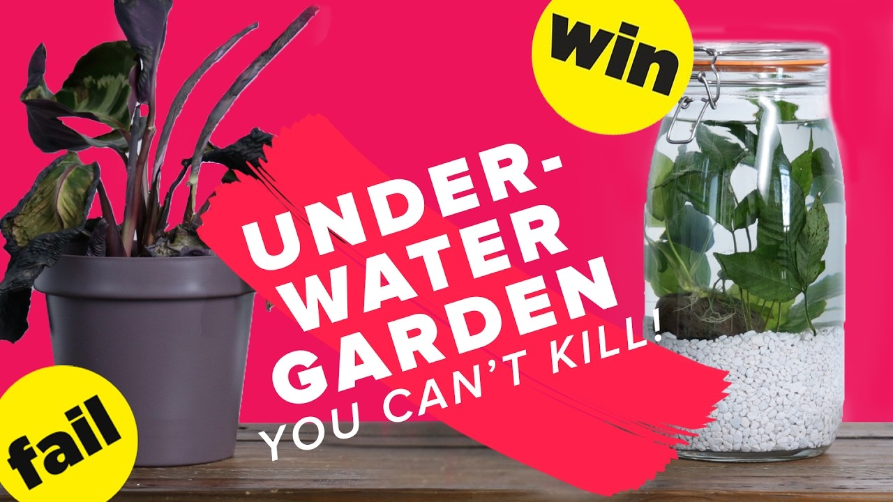 Underwater Garden You Can't Kill