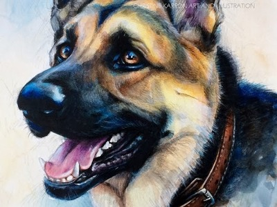 Watercolor and Colored Pencil GSD SPEED PAINTING by Ch.Karron