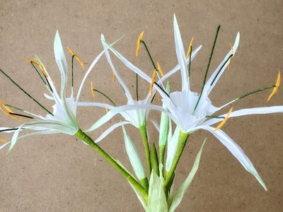 ABC TV | How To Make Hymenocallis Speciosa Paper Flower From Crepe Paper - Craft Tutorial