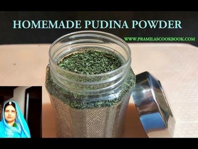 Homemade Pudina Powder | How To Make Pudina Powder At Home | सूखा पुदीना पाउडर