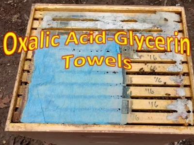 How to Make an Oxalic Acid-Glycerin Towel for Varroa Mite Treatment