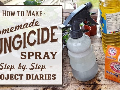 ★ How to: Make Cheap Homemade Organic Fungicide (Complete Step by Step Guide)