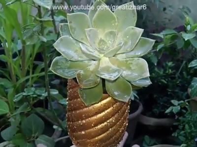 How to Make Succulent Planter | Recycling Ideas | Garden Ideas | Idea#5