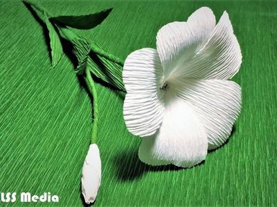 How to make sun drop origami paper flower|sun drop crepe paper flower making tutorials|paper crafts