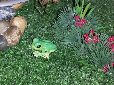 How to make a Miniature Frog