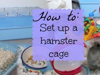 How to: SET UP A HAMSTER CAGE | Hamster HorsesandCats
