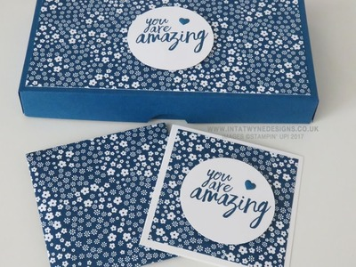 In Color Sectioned Box for 3x3 Cards and Matching Envelopes