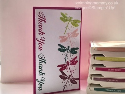 New Stampin' Up! In colours festival seven projects back to back Stampin' Up! products