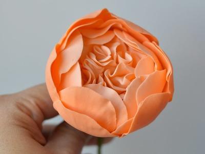 Part 1 Creating the David Austin Cabbage Rose Center in Gum Paste Sugar