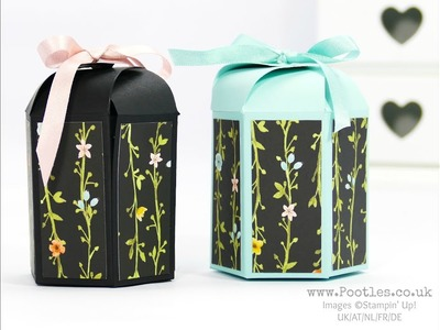 Whole Lot of Lovely Hexagonal Box with Cute Close Top