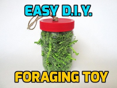 Easy, D.I.Y Small pet foraging toy!