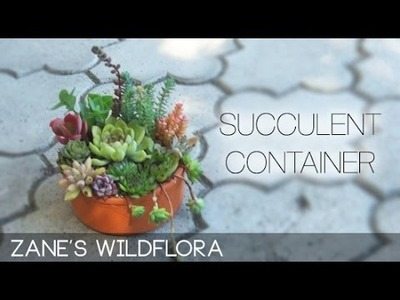 How to make a small succulent container