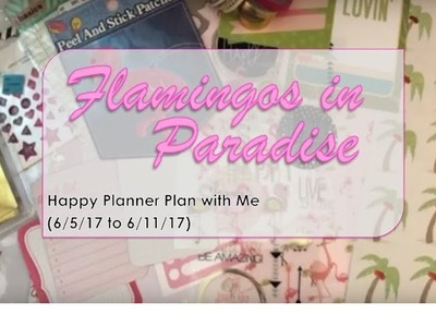 Flamingos in Paradise - Happy Planner Plan with Me (6.5.2017 to 6.11.2017)