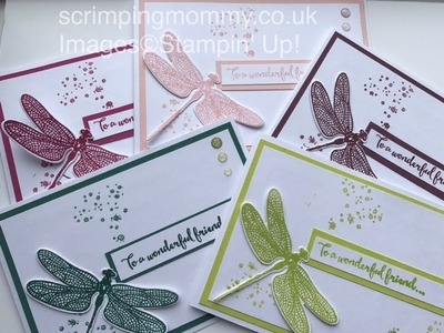 In colour festival day 2 of 7 . . Stampin' Up! products