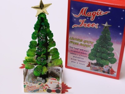 Magic Tree Making Kit