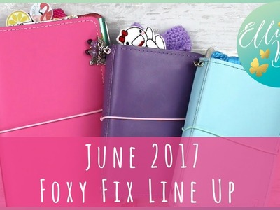 Planner Line Up Part 2: Foxy Fix Numbers 2 and 6 - my journal, faith planner, craft planner and EDC!