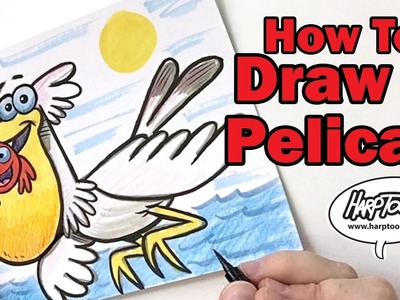 How to Draw a Pelican - Harptoons