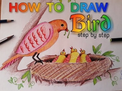 How to draw a bird sitting on a nest very easy