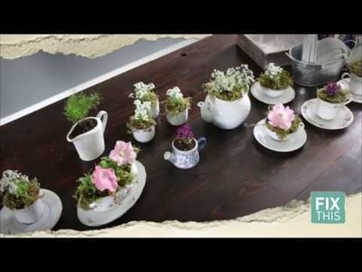 How To Make A Teacup Garden - Thrift DIY
