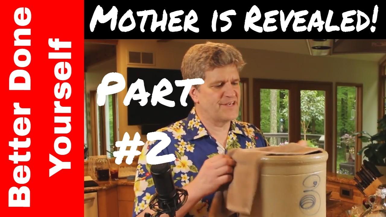 How to Make Apple Cider Vinegar - Part 2 - The Mother's Revelation