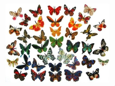 Bead Butterflies by Kathy Kostinsky. The collection of 62 big ones