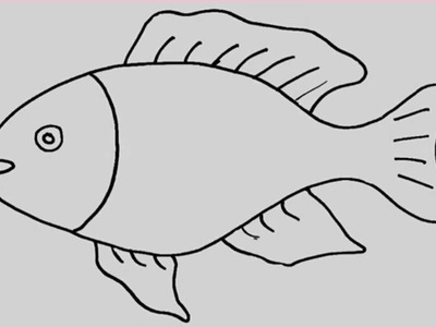 How to draw a fish. Animation and entertainment for kids