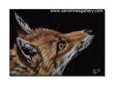 How to draw a fox on black paper with colored pencils
