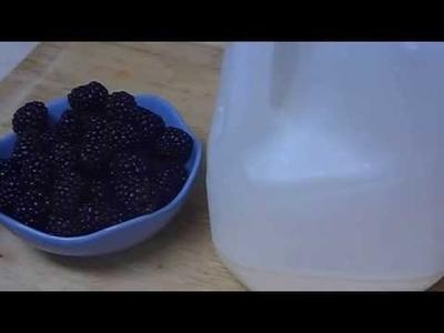 """How to Have Beautiful Skin with Moisturizing Freshening Blackberry Homemade Face Mask Recipe"""