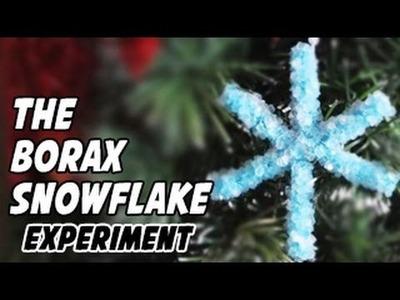 How to Make a Borax Snowflake