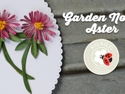 Aster | Garden Notes | Susan's Garden Club