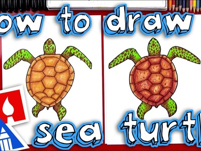How To Draw A Realistic Sea Turtle