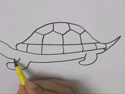 How to draw a Turtle 2 :Drawing tutorial step by step for kids children beginners